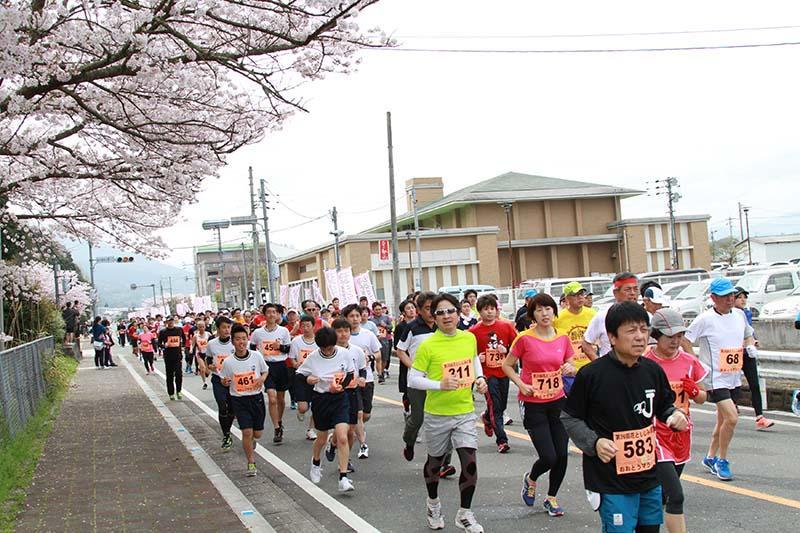 中止 マラソン 大会